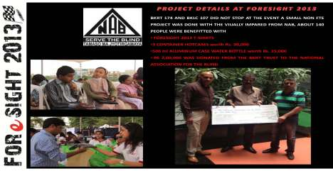 Foresight 2013 -  A Project_ Publicity_Fundraiser_City Festival_Page_09